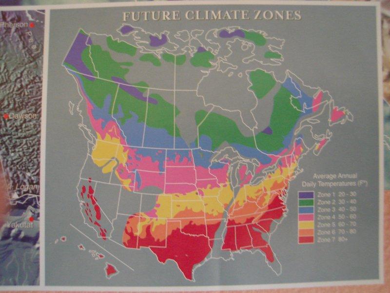 Ozone Hole Map