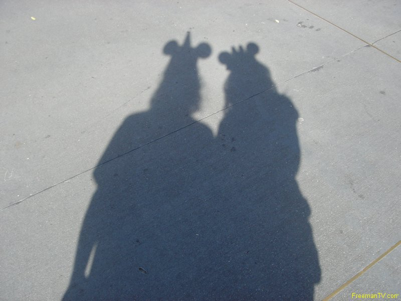Disney\'s Shadow