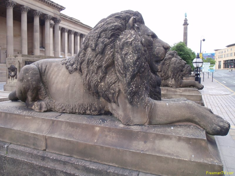 liverpool_lions
