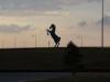 DIA Blue Horse