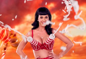 Katy Perry Whipped Cream Bra