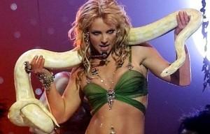 HPR-Britney-Snake